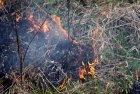 Лубенський район: рятувальниками зупинено загоряння сухої трави