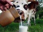 Про стан тваринництва у Полтавській області на 1 жовтня 2014 року